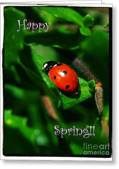 Ladybug Happy Spring Card Greeting Card by Carol Groenen