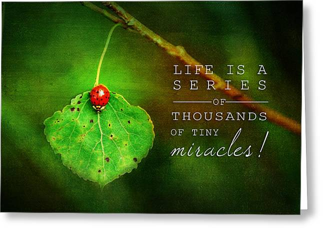 Ladybug On Leaf Thousand Miracles Quote Greeting Card