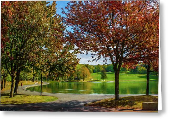 Lagoon Park In Montreal Greeting Card