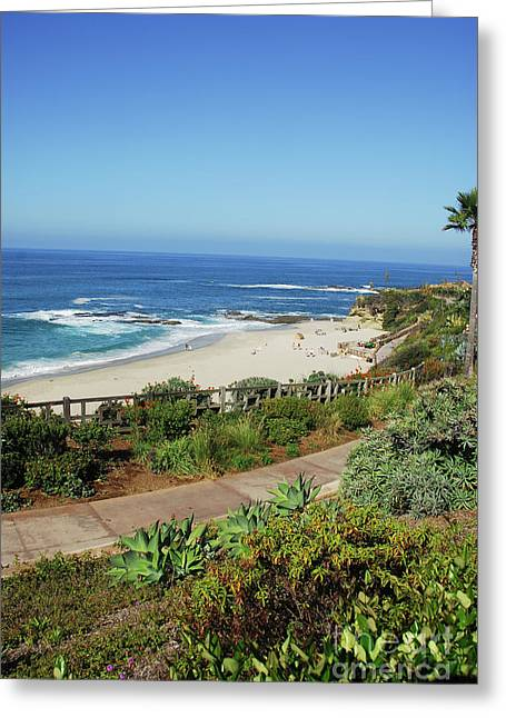 Laguna Afternoon Greeting Card by Timothy OLeary