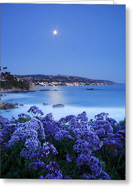 Laguna Moonrise Greeting Card