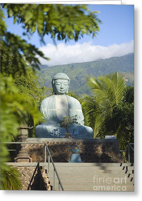 Lahaina Buddha At Jodo  Greeting Card