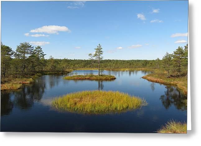 Laheema Nationalpark Estonia  Greeting Card by Eye Contact