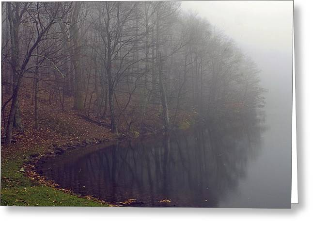 Lake Abbott Fog Greeting Card by Alan Raasch