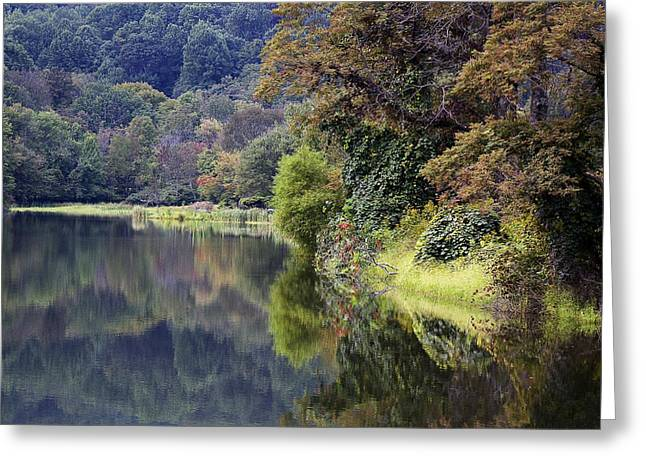 Lake Abbott Reflections Greeting Card by Alan Raasch