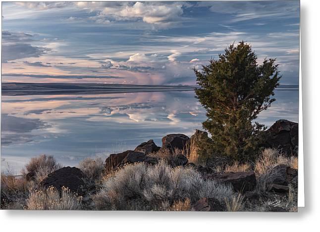 Lake Abert 8 Greeting Card by Leland D Howard