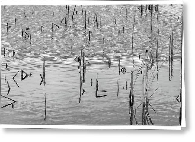 Greeting Card featuring the photograph Lake Abstract by Carolyn Dalessandro