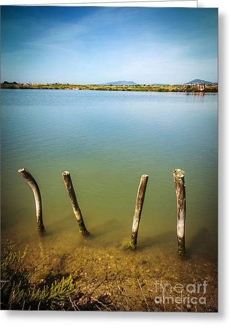 Lake And Poles Greeting Card by Carlos Caetano