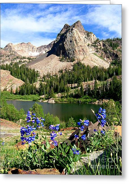 Lake Blanche And Sundial Peak Greeting Card