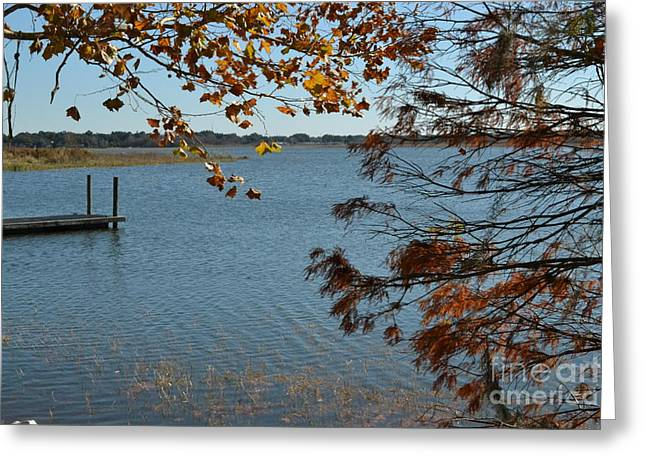 Greeting Card featuring the photograph Lake Bonny Autumn by Carol  Bradley