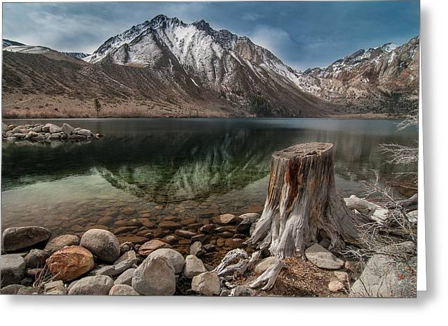 Lake Convict Tree Stump Greeting Card by Ralph Vazquez