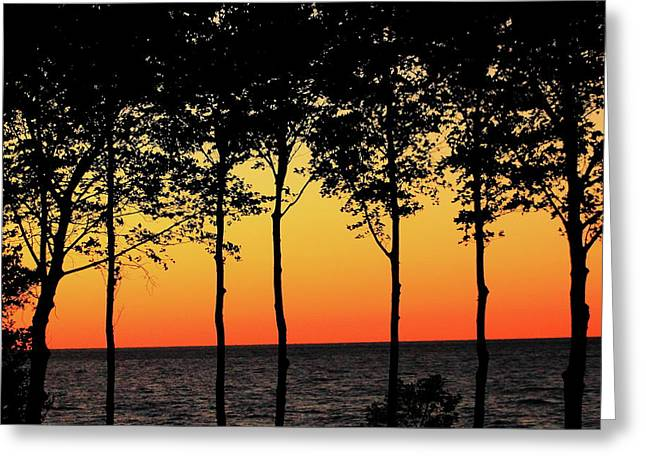 Greeting Card featuring the photograph Lake Erie Silhouettes by Bruce Patrick Smith