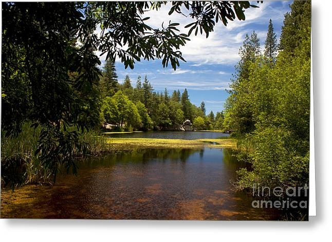 Lake Fulmor View Greeting Card by Ivete Basso Photography