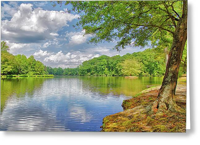 Lake Haigler 2014 01 Greeting Card