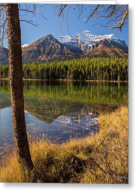 Lake Herbert Reflections Greeting Card