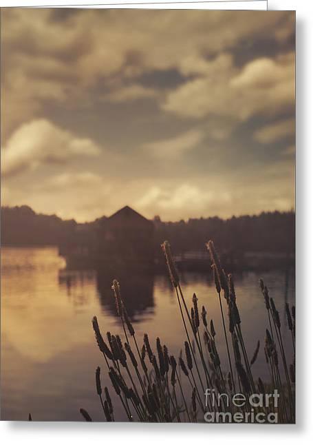 Lake House Greeting Card by Jelena Jovanovic