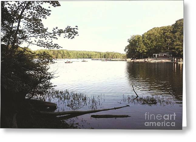 Lake At Burke Va Park Greeting Card