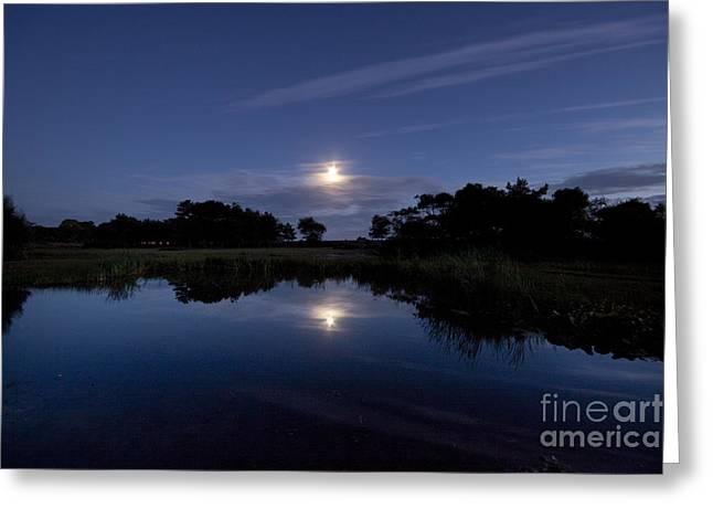 Lake In The Moonlight Greeting Card