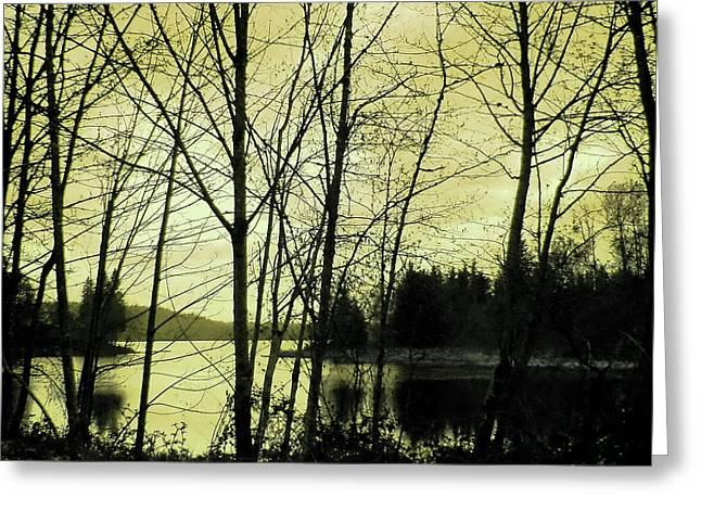 Lake In Winter Greeting Card by Jane Tripp