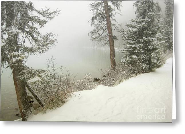 Greeting Card featuring the photograph Lake Louise Shore by Andrea Hazel Ihlefeld