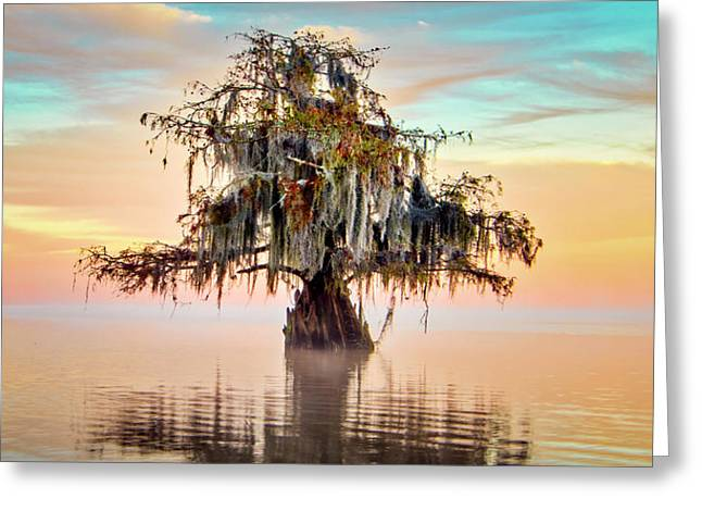Lake Maurepas In Pastels Greeting Card