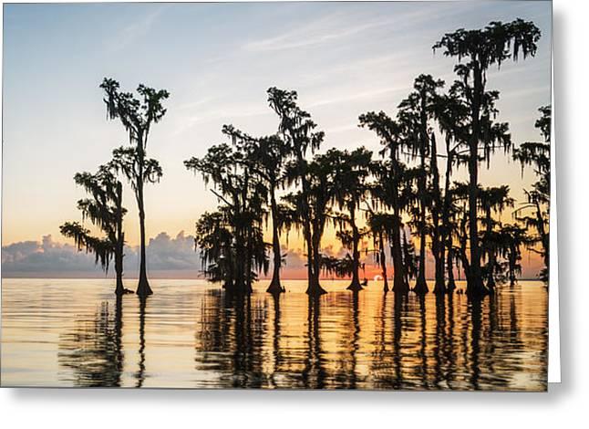 Lake Maurepas Sunrise Greeting Card by Andy Crawford