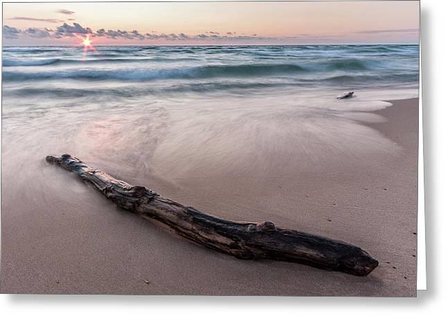 Lake Michigan Driftwood Greeting Card by Adam Romanowicz