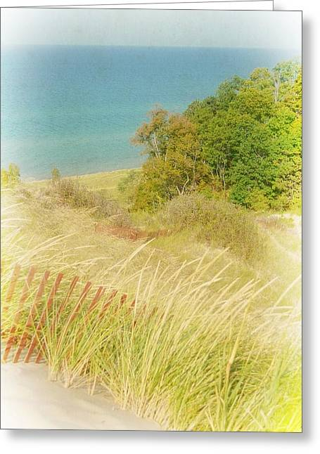 Greeting Card featuring the photograph Lake Michigan Dune View by Michelle Calkins