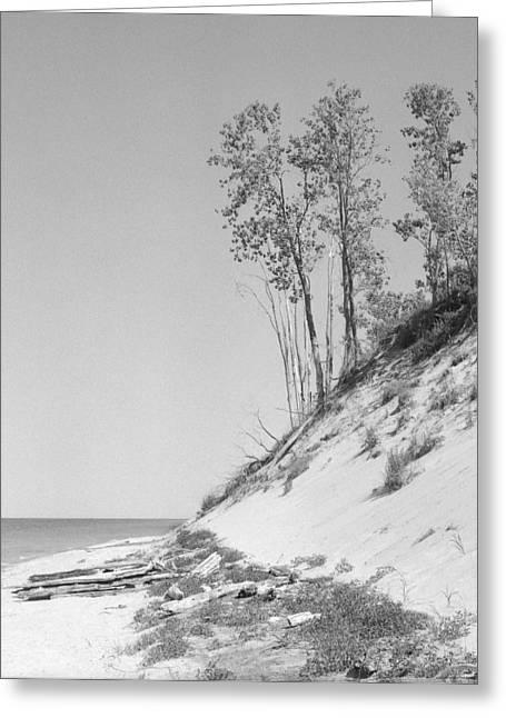 Lake Michigan Dunes Greeting Card by Richard Singleton