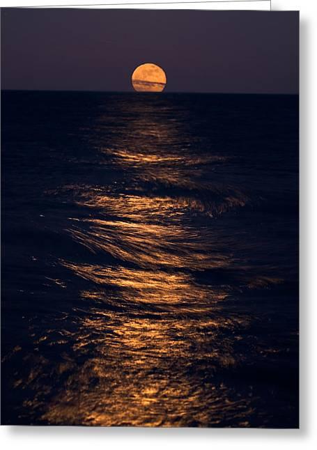 Chicago Reflections Greeting Cards - Lake Michigan Moonrise Greeting Card by Steve Gadomski
