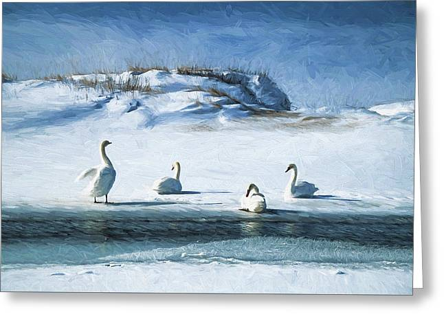 Lake Michigan Swans Greeting Card by Dennis Cox