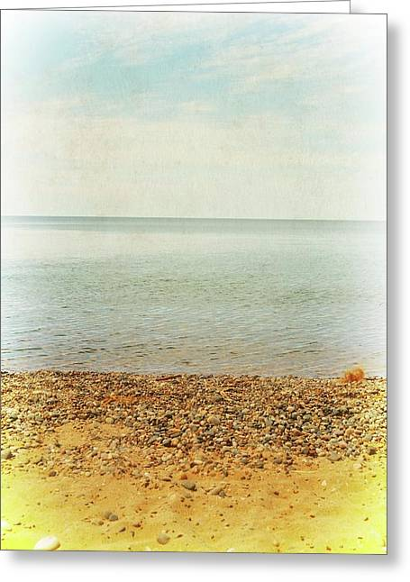 Greeting Card featuring the photograph Lake Michigan With Stony Shore by Michelle Calkins