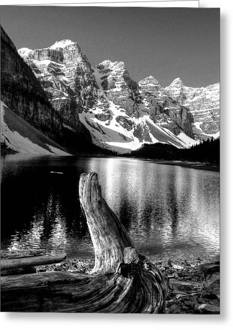 Lake Moraine Drift Wood Greeting Card