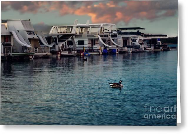 Lake Murray Morning At The Marina Greeting Card by Tamyra Ayles