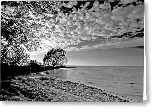 Lake Ontario. New York  Greeting Card