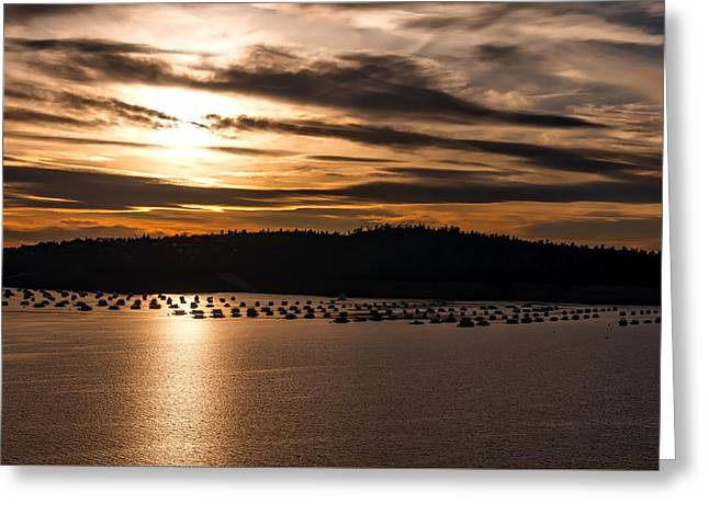 Lake Oroville At Sunset Greeting Card by Mountain Dreams