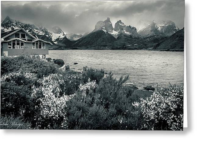 Lake Pehoe In Black And White Greeting Card by Andrew Matwijec