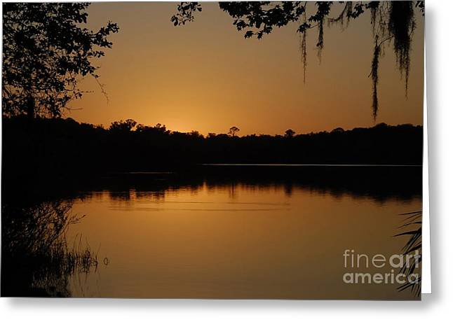 Lake Reflections Greeting Card by David Lee Thompson