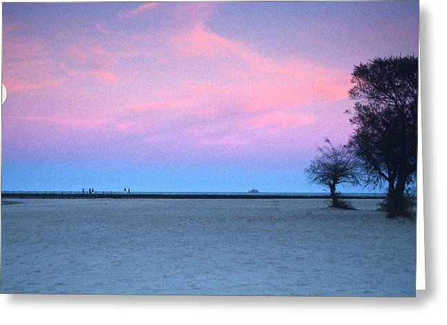 Moon Beach Photographs Greeting Cards - Lake shore evening Greeting Card by Donald Schwartz