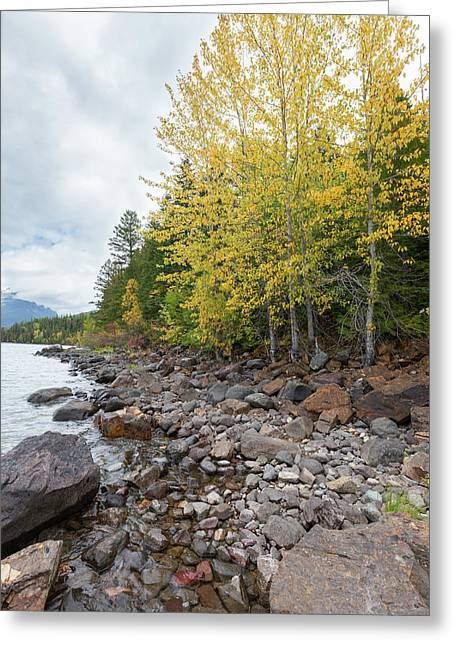 Greeting Card featuring the photograph Lake Shore by Fran Riley