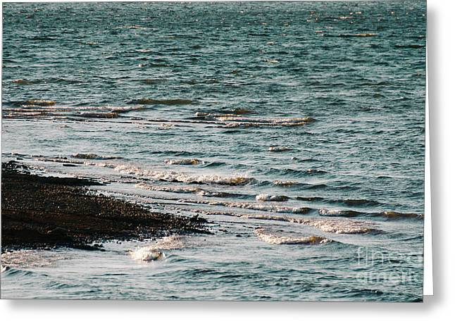 Greeting Card featuring the photograph Lake Strom Thurmond by Andrea Anderegg