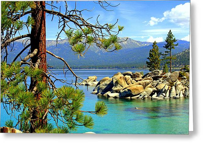 Lynn Bawden Greeting Cards - Lake Tahoe Colors Greeting Card by Lynn Bawden