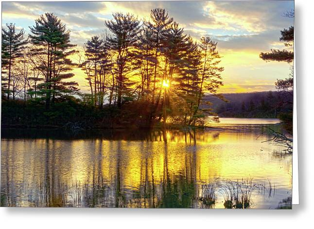 Lake Tiorati Golden Sunrise Greeting Card by Angelo Marcialis