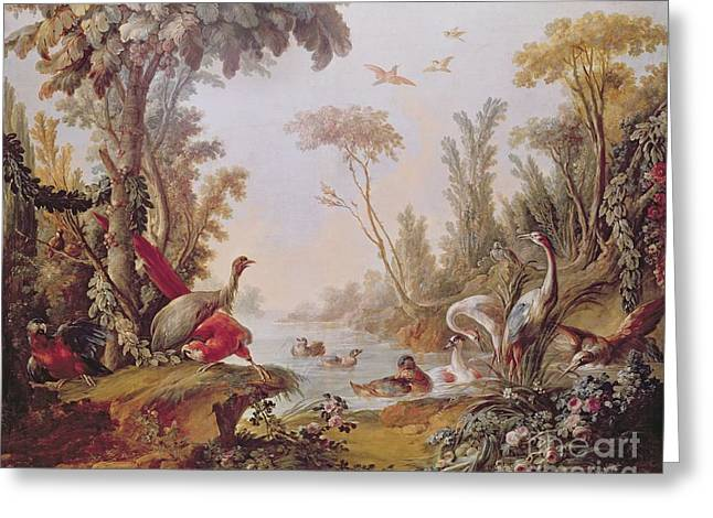 Boucher; Francois (1703-70) Greeting Cards - Lake with geese storks parrots and herons Greeting Card by Francois Boucher
