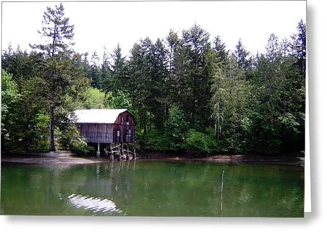 Lakebay Green Water  Greeting Card by Valerie Josi