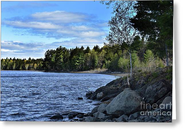 Lakeside Beauty Greeting Card by Skip Willits