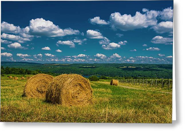 Lakeside Hayfield I Greeting Card by Steven Ainsworth