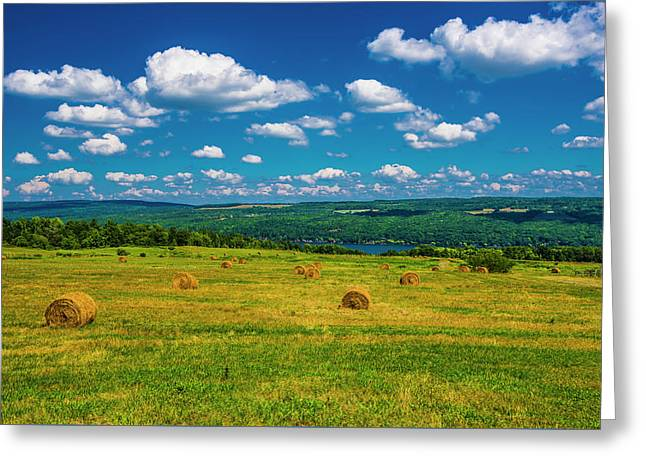 Greeting Card featuring the photograph Lakeside Hayfield II by Steven Ainsworth