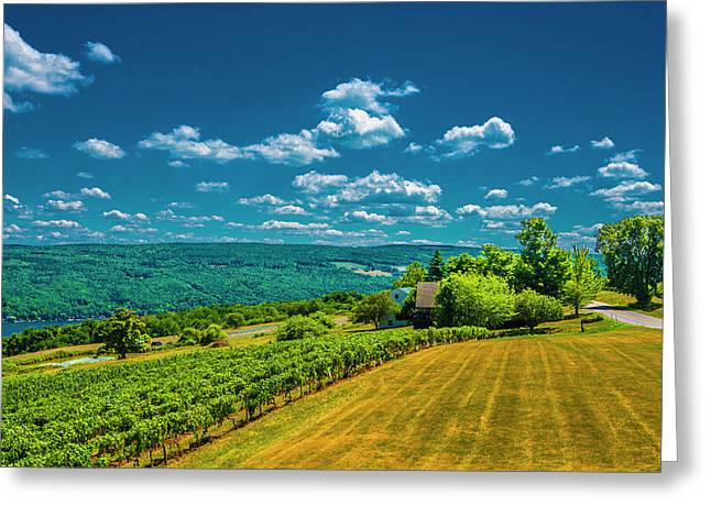 Greeting Card featuring the photograph Lakeside Vineyard II by Steven Ainsworth