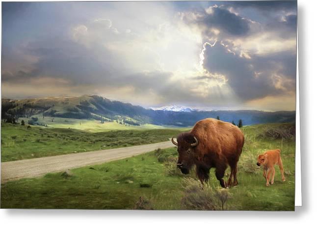 Lamar Valley Bison Greeting Card by Lori Deiter